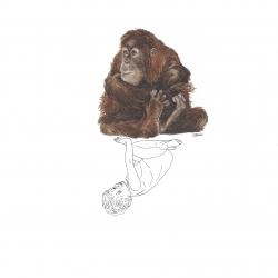 Lui et l'Orang-outan