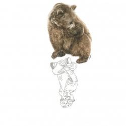 L'Enfant et l'Ours