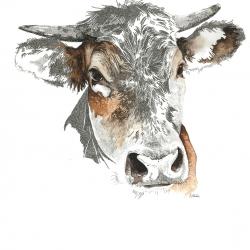 Portrait de la ferme 3