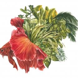 Poisson végétaux